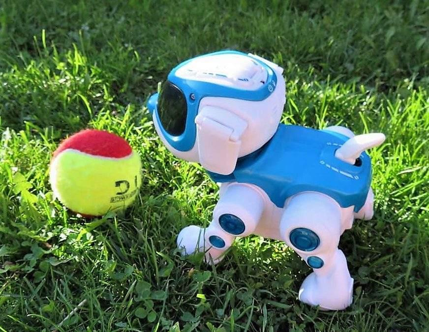 Teksta 360 Robotic Pup Review