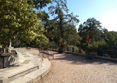 Camellia Terrace